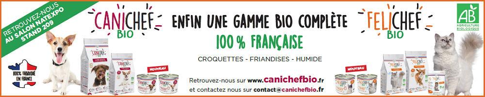 Canichef-Felichef juillet 2019