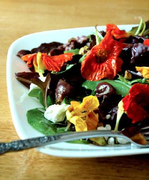 Salade aux fleurs du jardin
