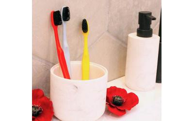 La Recyclette : La brosse à dents française aux couleurs de nos régions
