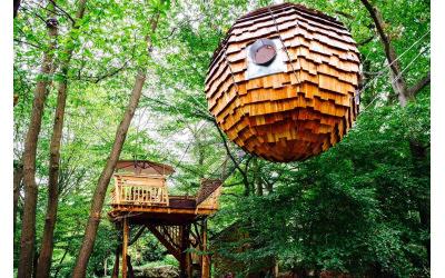 Ouverture des cabanes dans les arbres du Bois de Rosoy