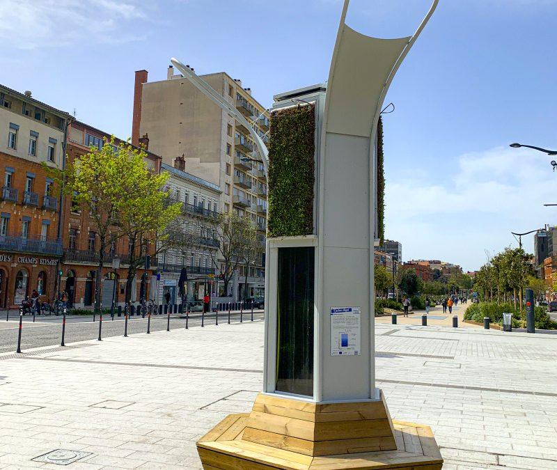 Un arbre algal pour lutter contre la pollution et le réchauffement climatique à Toulouse