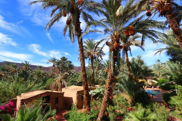 Séjournez dans un écolodge au Maroc !