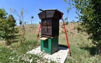 Étude BeeOmonitoring : grâce aux abeilles, nous serons fixés sur l'état de la biodiversité à Périgny