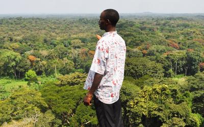 Treedom passe la barre des 2 millions d'arbres plantés dont 1 million plantés en seulement un an