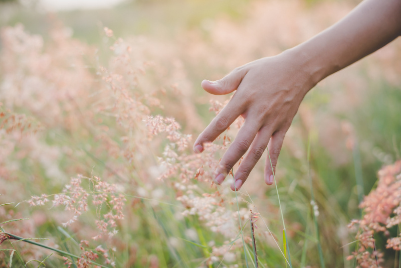 Comment fonctionne le sens du toucher ?