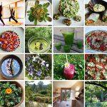 Stage détox avec le yoga et la cuisine vivante