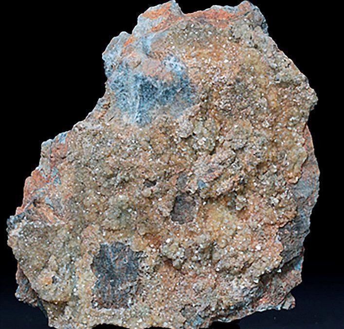 Barrière intestinale et métaux lourds : les effets de la zéolithe activée PMA