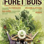 5ème Festival de la Forêt et du Bois au Château de la Bourdaisière